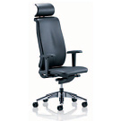 Dieter Stierli Reflex Swivel Chair
