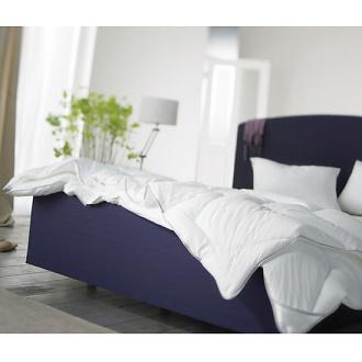 Auping Design Team Nice - Lyon Bed