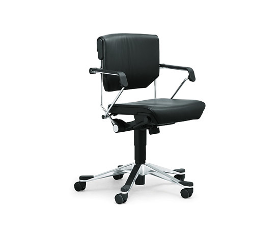 Animos & Partner Giroflex 33 Chair