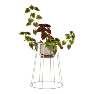 Anita Donna Bianco, Valentina Paracchi and C12+ Cibele Plant Pots