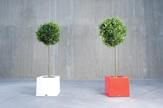 Dirk Wynants Alea Flowerpot