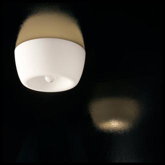 Harry Amp Camila Amelie Lamp