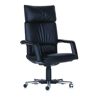 Amazon.com: Herman Miller Executive Sayl Chair Home Office Desk