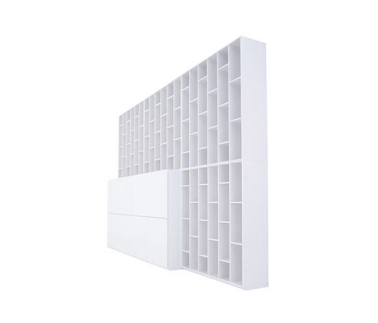 Pagnon and Pelhaitre Book and Look Shelving