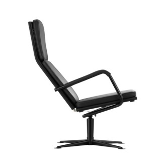 TECTA D37 Swivel Lounge Chair