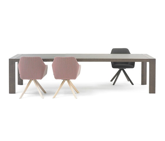 Wim Van Ast Extenso II Table